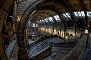 THe Natural History Museum by RomanyWG