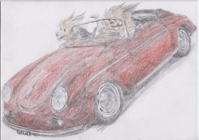 Pooch Porsche colour by Nelliehunter