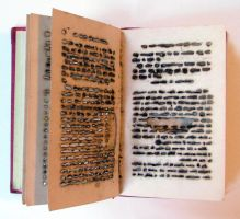 Altered Book I, View I by LoryTraugott