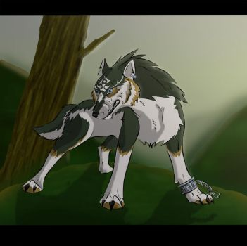 Wolf Link + video by hakuron
