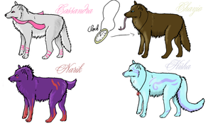 Wolf adopts by Fall-of-rain