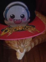 CC the botdf cat by Monster1777