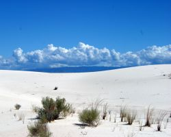 White Sands New Mexico 2 by PietschPhotography