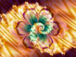 Flower and Fire Spiral by Thelma1