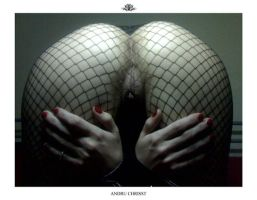 Fishnet 6 by auxcentral