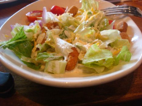 my salad from outback by aragornsparrow