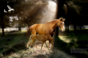 Mom and Foal by OhThePlace-Designs