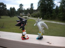Caption this!: Shadow and Silver pic :Part 2: by ShadowsEspeon
