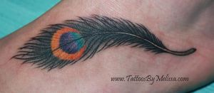 Pretty Peacock Feather by Melissa-Capo