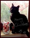 Merry Christmas by Siril