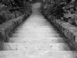 Stairs by MarianasABeaner