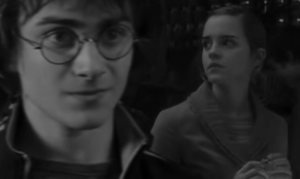 Harry and Hermione by profil10