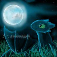HTTYD-Good night, Toothless... by Yoshi66666666