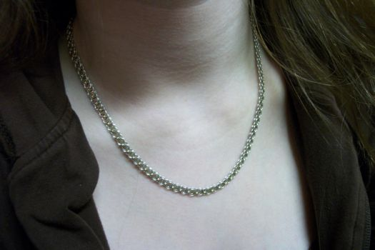 Helmchain Necklace by pochay