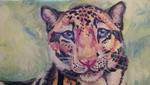 detail of clouded leopard by DawnFrost