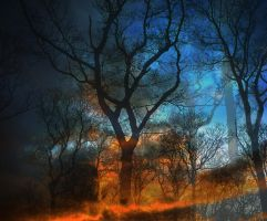 The Burning Trees by worksteady