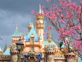 Disneyland by juliancarax