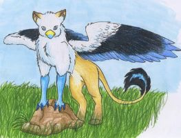 colored gryphon by aacrell
