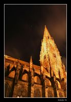 Minster - north side at night by malaskor