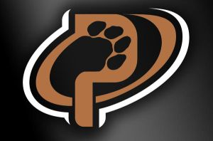 Panthers Basketball Alt. Logo by MarkRantal
