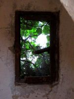 Window of my Mind by KanaZilla