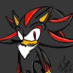 Shadow The Hedgehog Personality | RM.
