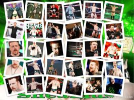 Sheamus by Bubbles1253
