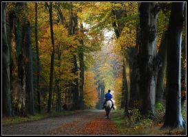 Riding towards a country-house by Esperimenti