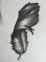Dark Feather by SilverTail999