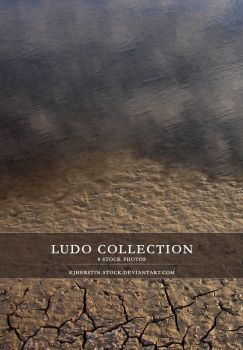 Ludo Collection by stockkj