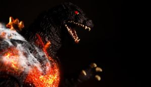 Burning Godzilla - Darkness by Mikallica