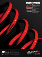 Tanabe Coil Spring Ad by dkim1985