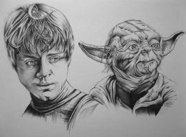 Luke and Yoda by youbesonicimtails