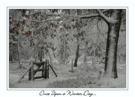 Once Upon a Winter Day by IsaFortyThirty1