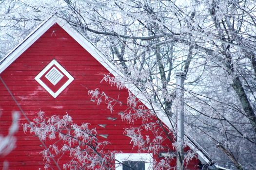 Red House by jpcosentino