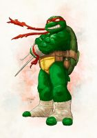 Raph by SpicerColor