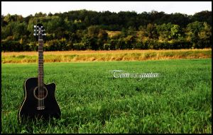 Toms Guitar by DOMDESIGN