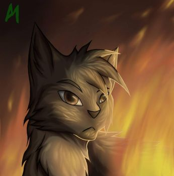 On Fire by Micraplays