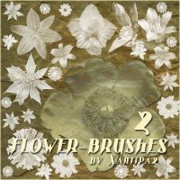Flower Brushes 2 by Xantipa2-Stock