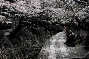 Kyoto-05 by S-D-R