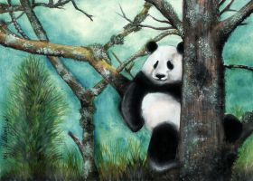 Panda Tree by sollamy