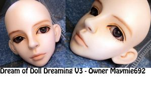 Dream of Doll Dreaming V3 Face up by SyrynValentyne