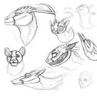Emdy Heads Study and Variation by Ganja-Shark
