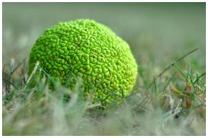 Ball of Vibrancy by iKillDesigns
