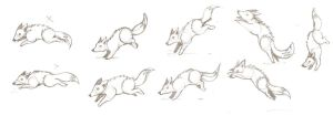 fox animation. early studies by Tua