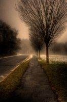 Foggy Winters Eve by Keith-D