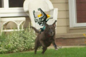 my dog....Link wolf form... by lordofflowers