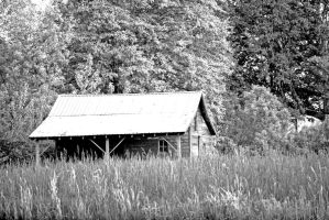 Another old shack by dislexicpalindrome