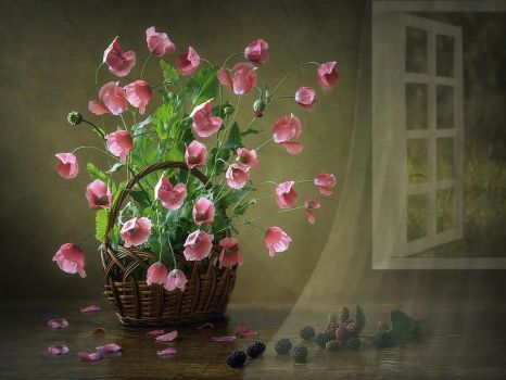Still life with poppies by Daykiney