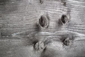 Wood Texture 10 by Limited-Vision-Stock